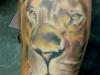 tattoo-leone-5