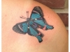 butterfly-tattoo-20