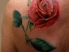 tattoo-rosa-8.jpg