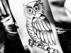 tattoo-justin-bieber-gufo