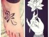 lotus flower-12
