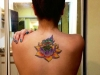 lotus flower-3