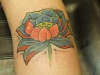 lotus flower-6