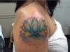 lotus-flower-1