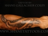 tatuaggio_avambraccio_11_20120211_1331961354