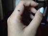 tatuaggi-piccoli-10