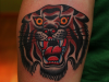 tigre-7