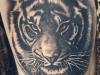 tigrecinese-tatuaggio-10
