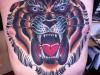 tigrecinese-tatuaggio-13