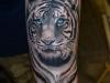 tigrecinese-tatuaggio-8