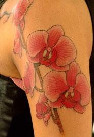 Tatuaggio orchidea