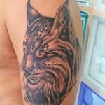 lince-tattoo