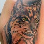 lince-tatuaggio