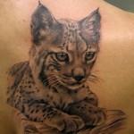 tatuaggio-lince