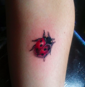 coccinella tattoo