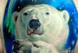 Orso polare tattoo