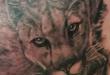 mountain lion tattoo
