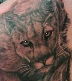 mountain lion tattoo