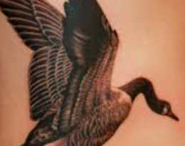 goose tattoo