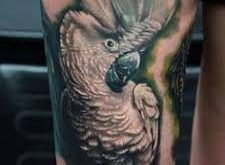 tattoo cacatua