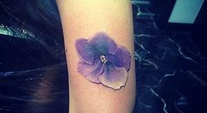 primula tattoo
