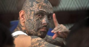 Due leggende sui tattoo