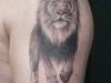 tattoo-leone-4
