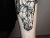 tatuaggio-cavallo-11