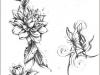 Tatuaggi-fiori-8