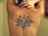lotus flower-2