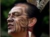 guerriero_maori_15_20120211_1287858698