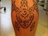 tartaruga_maori_3_20120211_1238611834