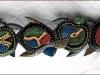 tartaruga_maori_9_20120211_1806861937