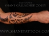 tatuaggio_avambraccio_7_20120211_1388324003